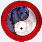 Yin and Yang of Taoism